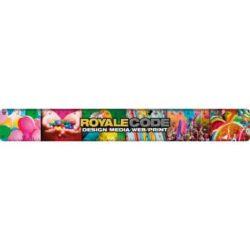 30cm promotional plastic rulers pfn1499
