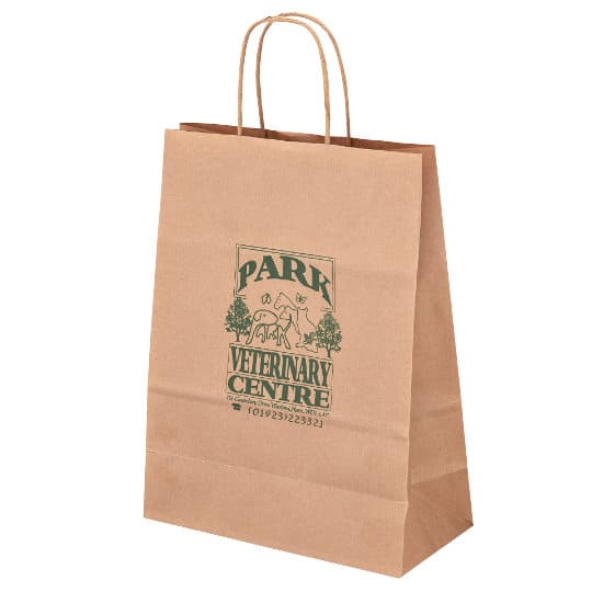 A4 100gsm sustainable paper printed carrier bags pfn1160
