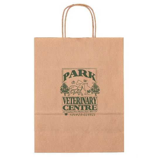 A4 100gsm sustainable paper printed carrier bags in brown side on pfn1160