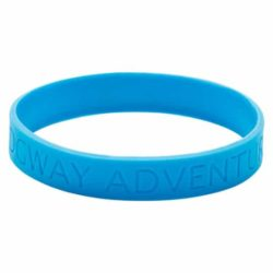 Embossed promotional silicon wristbands adult size in blue pfn1403