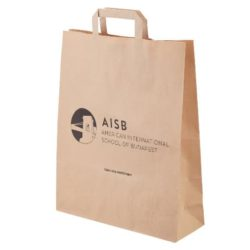 Large recycled printed paper shopping bags side view pfn1180